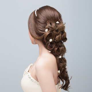 Bridal Hair Jewels and Accessories